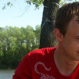 Андрей, 29 лет, Воскресенск