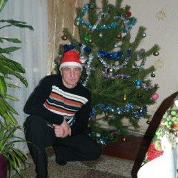 Руслан, 38 лет, Белополье