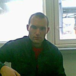 Александр, 32 года, Курган