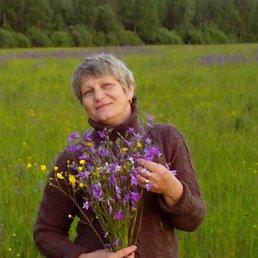 Татьяна, 58 лет, Гусь-Хрустальный