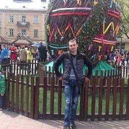 Свитой, 29 лет, Ялта