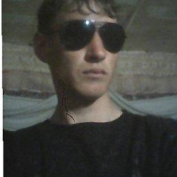 Андрей, 24 года, Иловля