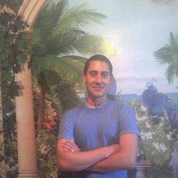 Андрей, 27 лет, Красилов