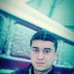 Дмитрий, 28 лет, Черноголовка
