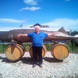 Сергей, 53 года, Тетюши