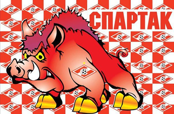 Картинка спартак свиньи