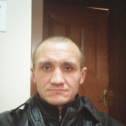 КОВАЛЬЧУК, 40 лет, Кировское