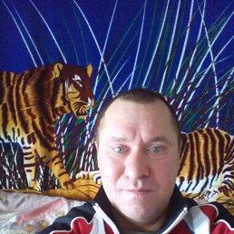 Фарид, 44 года, Тюлячи
