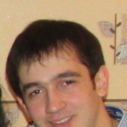 Роман, 28 лет, Заволжье