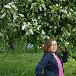 Анастасія, 27 лет, Борзна