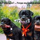 Фото Вера, Павловск - добавлено 20 сентября 2016 в альбом «Девяткино»