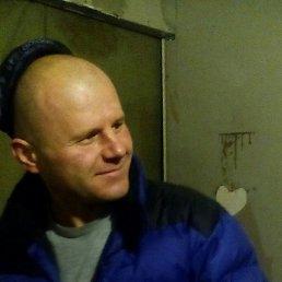 Сергей, 37 лет, Мытищи