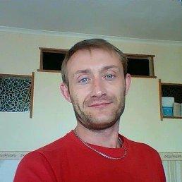 Василий, 35 лет, Белый