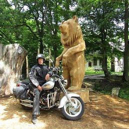 Сергей, Светлогорск, 64 года
