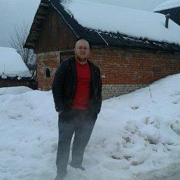 Юрий, 32 года, Клин