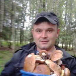 денис, 27 лет, Нелидово