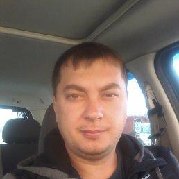 Андрей, 37 лет, Александрия