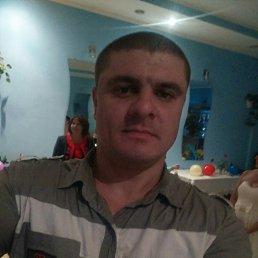 Дима, 37 лет, Килия