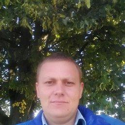 Сергій, 31 год, Млынов