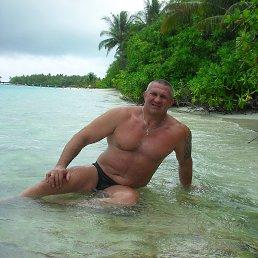 Александр, 52 года, Сафоново