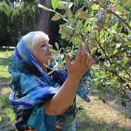 Людмила, 61 год, Антрацит