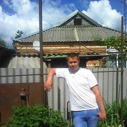 Юрий, 28 лет, Новоалександровск