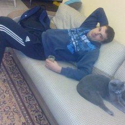 Иван, 30 лет, Богородицк