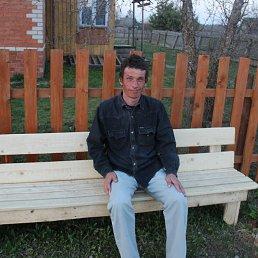 Алексей, 44 года, Большое Село