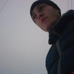 Серега, 29 лет, Горловка