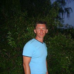 влад, 42 года, Синельниково