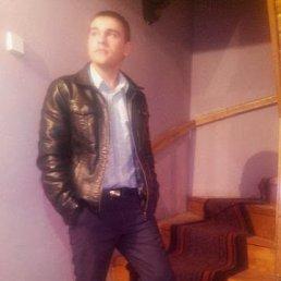 Роман, 28 лет, Долина