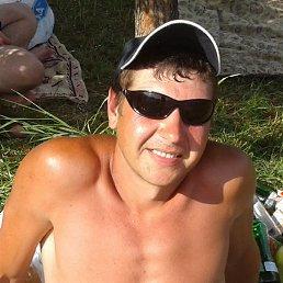 Дмитрий, 37 лет, Красноград