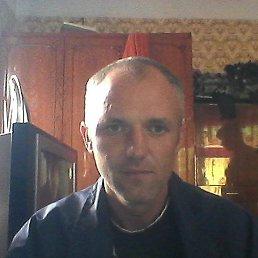 сергей, 41 год, Нововолынск