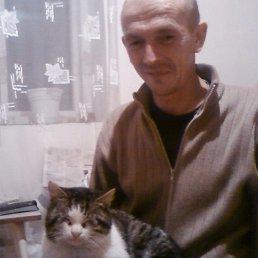 Николай, 51 год, Мари-Турек