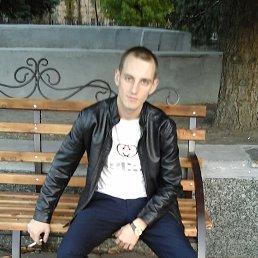 Алексей, 27 лет, Павлоград