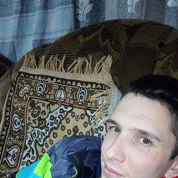 Андрей, 28 лет, Арск