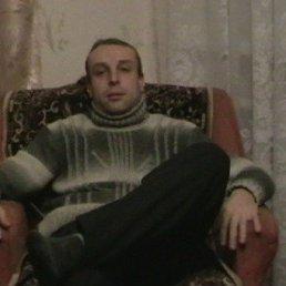 Руслан, 43 года, Старица