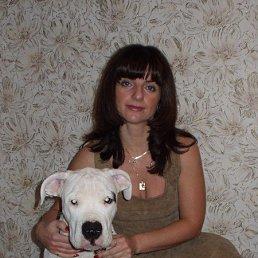 Татьяна, 42 года, Нижний Новгород