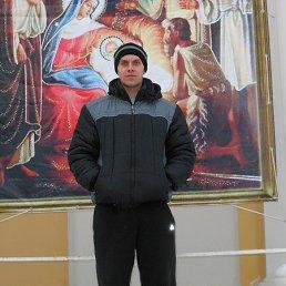 Александр, 38 лет, Пошехонье
