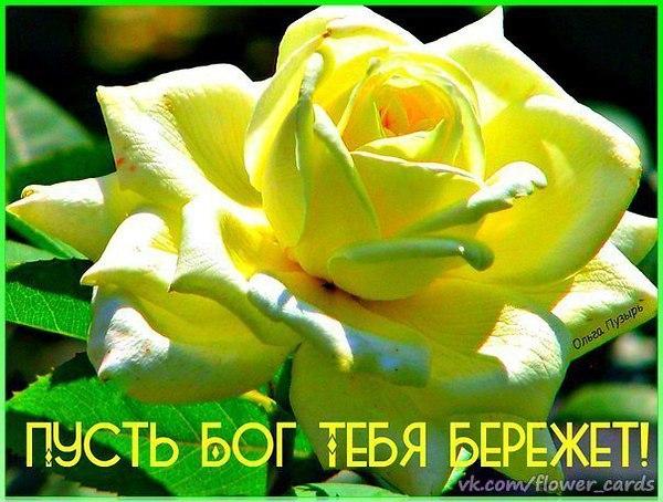 Картинки будьте хранимы богом с красивыми цветами, женщине картинки поздравление