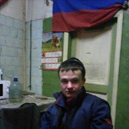 Александр, 29 лет, Архангельск