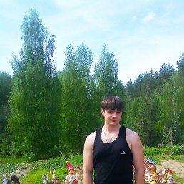 Андрей, 28 лет, Ворсма