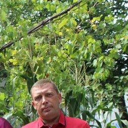 Владимир, Ульяновск, 44 года