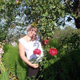 Наташа, 53 года, Ивангород