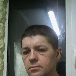 Андрей, 38 лет, Коломна-1
