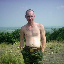Александр, 36 лет, Звенигово