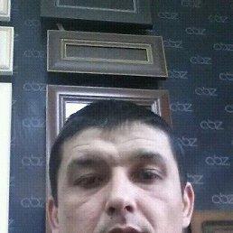 Фото Odil, Ташкент, 38 лет - добавлено 27 января 2017