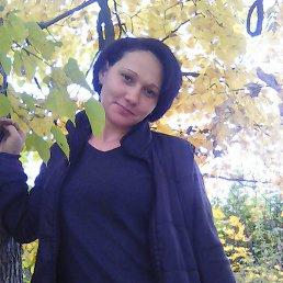 Фоменко, 36 лет, Новосиль