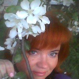 Ирина, 43 года, Орехово-Зуево