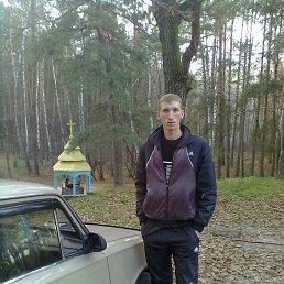Дмитрій, 28 лет, Шевченково